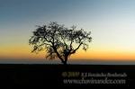 Landscape_Spain5245