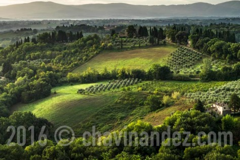 Panoramic views of Vineyards and fields in SanGimignano, Tuscany, Italy